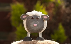 Picture smile, photo, toy, sheep