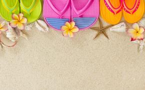Picture sand, summer, shell, starfish, slates, plumeria