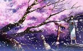 Picture girl, branches, the wind, katana, gate, petals, Sakura, lantern, kimono, flowering