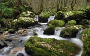 Picture water, stream, stones