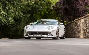 Picture Ferrari, berlinetta, F12, Silver