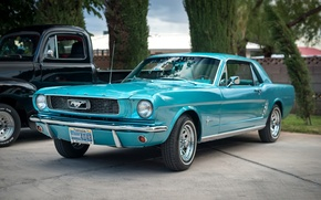 Wallpaper Mustang, Ford, classic, the front