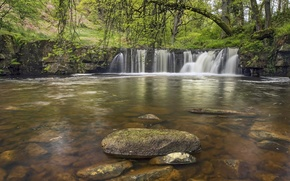 Picture forest, river, stones, England, waterfall, England, North York Moors, Walker Mill Foss