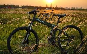 Picture bike, sport, mountain bike, FLY-600