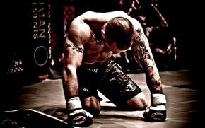 Wallpaper tattoo, fighter, fighter, tattoo, mma, mixed martial arts, mixed martial arts