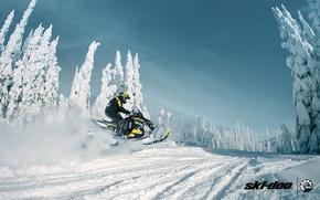 Picture forest, snow, sport, sport, snow, snowmobile, snowmobile, ski-doo, brp, skidoo, adrenaline, renegade