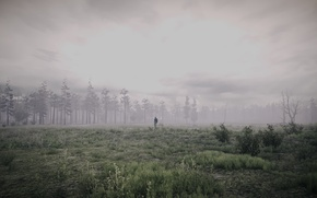 Picture forest, landscape, the game, people, tractor, 35MM