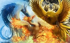 Picture cold, snow, birds, fire, zipper, fantasy, art, battle, Phoenix, in the sky