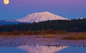 Picture mountain, reflection, snow, nature, trees, the moon, the evening, the full moon, the sky, river, ...