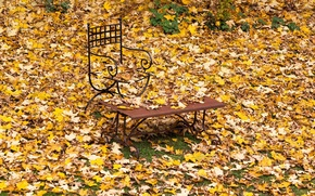 Picture bench, chair, falling leaves