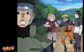 Picture road, emotions, team, Naruto, friends, mission, vest, ninja, Sakura Haruno, captain Yamato, Sai Akashi, bandage …