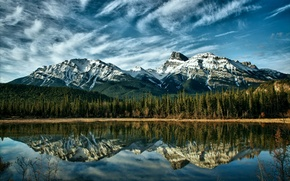 Picture The sky, Mountains, Forest, Mountain river