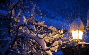Picture winter, roof, light, snow, trees, slope, lantern