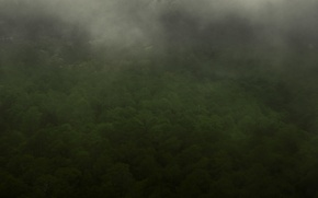 Picture green, dark, fantasy, forest, misty, sky, landscape, the, nature, from, background, mountains, view, scenic, clouds, …