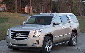 Picture Cadillac, Escalade, '2014