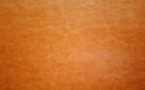 Wallpaper leather, texture, leather, skin