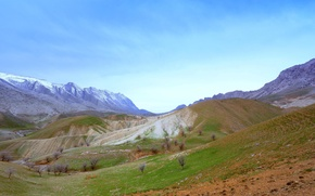 Picture mountains, hills, spring