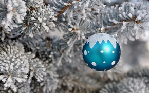 Picture snow, holiday, toy, tree, new year, ball