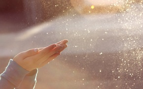 Picture the sun, light, squirt, glare, the wind, girl, palm