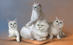Picture cats, figure, by SalamanDra-S