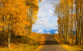 Picture road, autumn, the sky, trees, mountains, nature, usa, colorado, telluride
