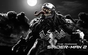Picture fan art, Marvel Comics, Venom, The Amazing Spider-Man 2, Eddie Brock, Symbiote