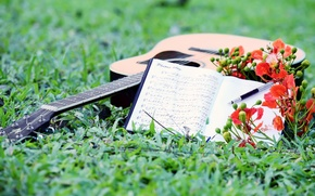 Picture notes, music, guitar