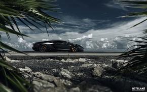 Picture machine, auto, the sky, leaves, clouds, Lamborghini, auto, Aventador, notbland, Webb Bland