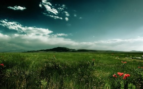 Picture grass, clouds, mountain, Field