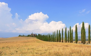 Picture field, the sky, clouds, trees, blue, house, Italy, farm, Tuscany