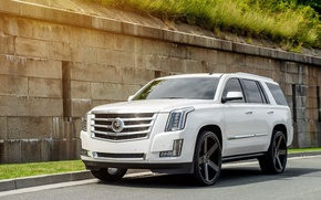 Wallpaper Cadillac, Escalade, Front, White, Road, 2015, Rides