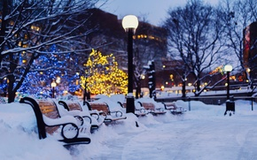 Wallpaper holidays, snow, light, winter, trees, the city, lights, benches, garland, the evening, bokeh, benches, shop, ...
