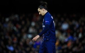Wallpaper Football, Sweden, Football, Player, Player, PSG, PSG, Paris Saint-Germain, A very loyal player, Zlatan Ibrahimovic, ...
