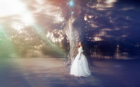 Picture girl, tree, tale, dress, ALICE IN WONDER LAND