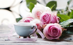 Wallpaper table, Cup, drink, roses, leaves, bokeh, ribbons, pink