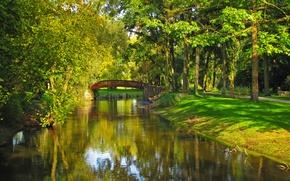 Picture grass, trees, bridge, nature, Park, river, photo, Poland, Sochaczew