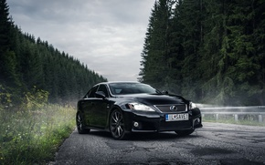 Picture Lexus, IS-F, Black, Road, Forest