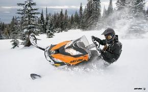 Picture snowmobile, 800, Summit, snowmobile, BRP, Ski Doo
