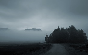 Picture road, forest, mountains, fog