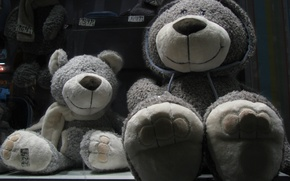 Wallpaper bears, bear, plush, Teddy bears, plush, happy, bear