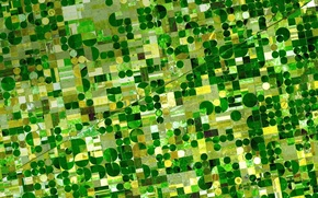 Picture field, USA, Kansas, photo NASA