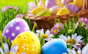 Picture grass, flowers, chamomile, eggs, spring, Easter, grass, sunshine, flowers, spring, eggs, easter, daisy, meadow, camomile