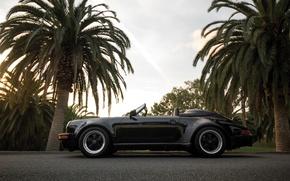 Picture car, Porsche, supercar, sportcar, black, nature, classic, usa, palms, carrera, speedster
