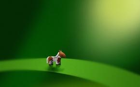 Wallpaper sheet, green, horse, pony, micro