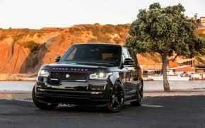 Picture SUV, Range Rover, tuning, STRUT