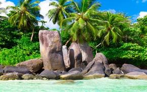 Picture sand, sea, beach, the sun, tropics, the ocean, shore, island, summer, beach, sea, ocean, coast, …