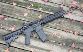 Picture leaves, wood floor, Moss, AR-15 rifle assault