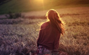 Picture wheat, field, girl, the sun, rays, nature, background, Wallpaper, mood, rye, plants, brunette, widescreen, full …