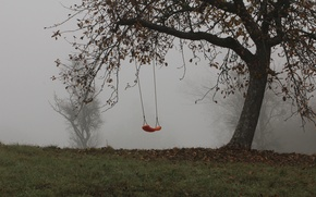 Wallpaper trees, fog, swing, Autumn, trees, autumn, fog, swing, mist