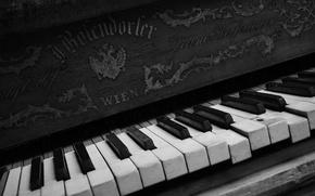 Wallpaper keys, piano, music
